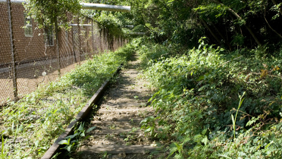 Old train tracks lie in the undergrowth ...
