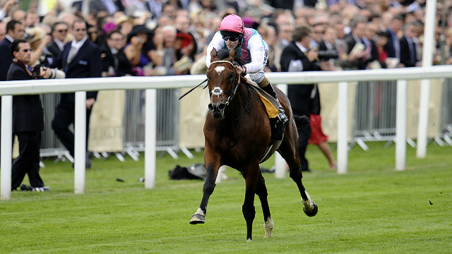 Frankel, ridden by Tom Queally, cruises to an 11-length win in The Queen Anne Stakes at Royal Ascot