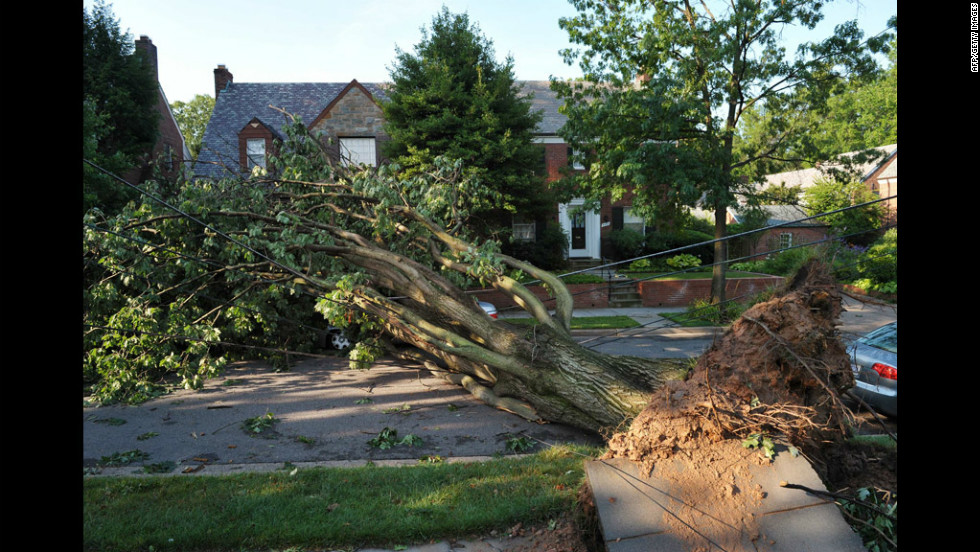 An uprooted tree blocks a street in the American University neighborhood of Washington.