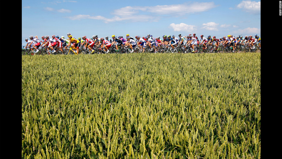 The peloton passes through wheat fields.