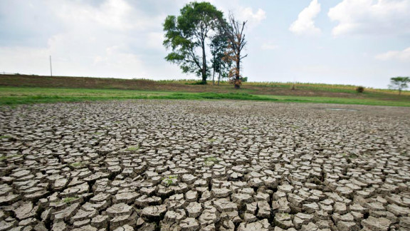 Cracked, dry ground marks the area where a pond normally stands in Crossville, Illinois, on July 11.