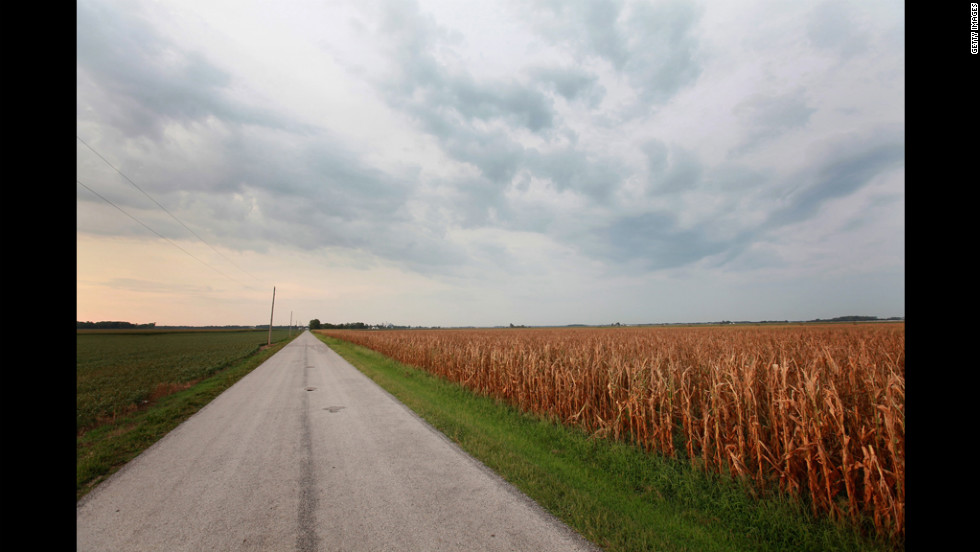 A field of corn shows the effects of the drought on a farm near Fritchton, Indiana, on Wednesday, July 17.
