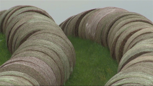 Farmers search for hay during drought