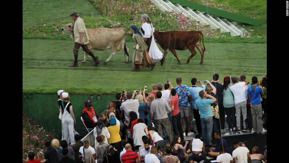 Fans take photos as cows are lead across the stadium floor.