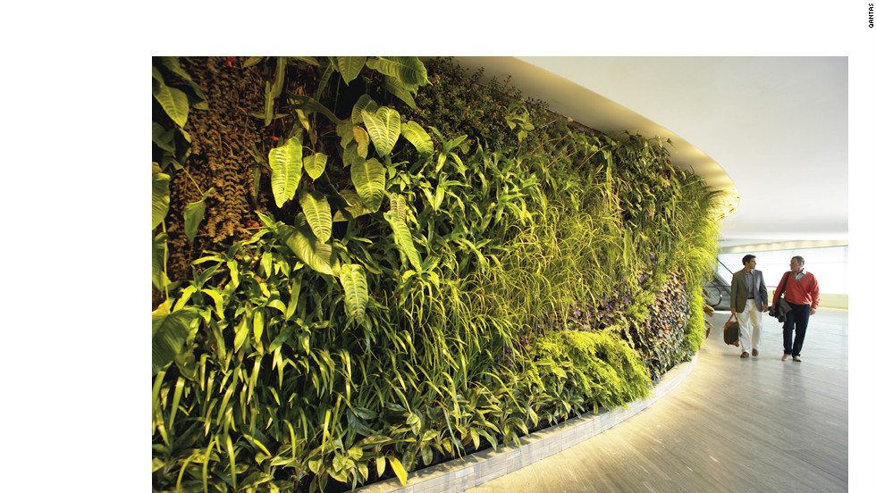 Qantas First Lounge at Sydney International Airport is home to a 98-foot, 8,400-plant vertical garden. The green installation forms part of the first class lounge facility's restaurant and day spa treatment rooms.