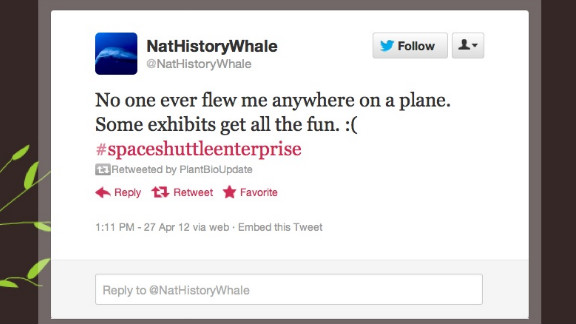 What's it like to witness everything and interact with nothing? @NatHistoryWhale knows. This lonely icon, hanging in New York's Natural History Museum, comments on current events from its solitary post. Thankfully, it has plenty of digital company. Followers: 14,756