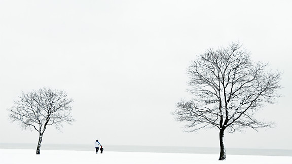The literal contrast between white and black, and the size of the two people against two trees, allowed Peterson to play with depth of field and composition.
