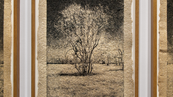 When photographing trees, Brandt has also used handmade paper using the wood from the park he