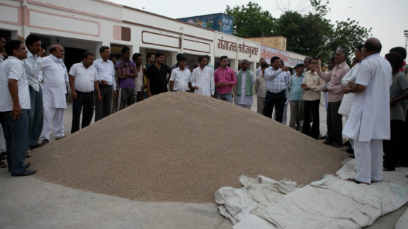 Farmers sell guar seeds in the open market. Prices have risen tenfold in the last year.