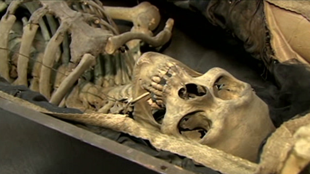 Century-old human skeletons for sale