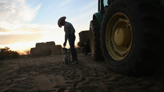 Rancher Gary Wollert pauses before heading out for work on August 23 near Eads, Colorado. The nation