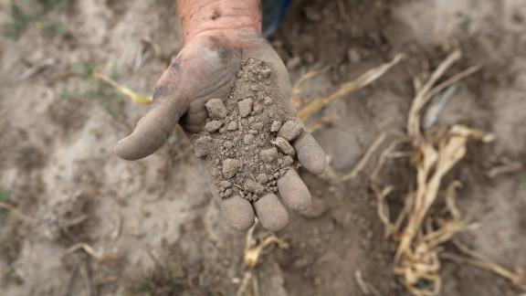Farmer Darren Becker sifts through arid topsoil under a ruined crop on the family farm on August 24 in Logan, Kansas.