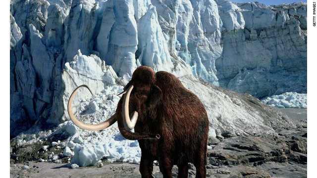 The last woolly mammoth died 4,000 years ago on an island in the Arctic -- and that's significant