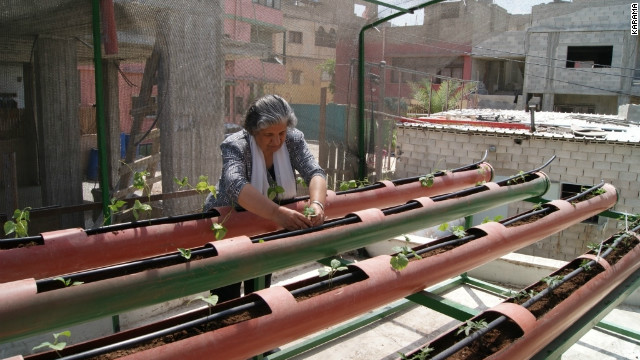 A woman in Deheishe refugee camp tending her plants in her greenhouse. Women are mostly taking the lead in the greenhouse project.