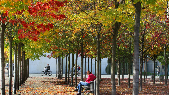 Cyclists drive past trees with colored leaves in Berlin's governmental district on October 2, 2012. Meteorologists forecast warm and sunny autumn weather for the following days in the German capital. AFP PHOTO / WOLFGANG KUMM GERMANY OUT (Photo credit should read WOLFGANG KUMM/AFP/GettyImages)