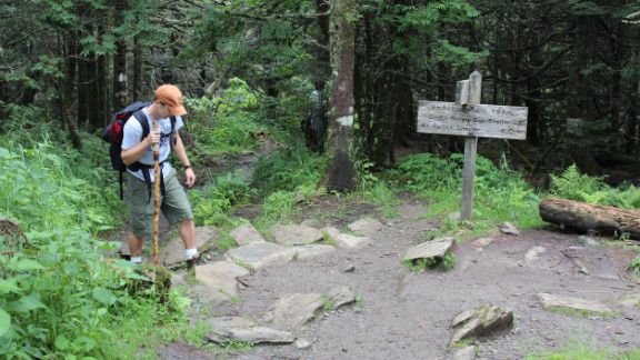 Walking up to Clingman's Dome in  Great Smoky Mountains National Park, hikers can see the southern-most Appalachian spruce-fir forest, black bears and red-cheeked salamanders.