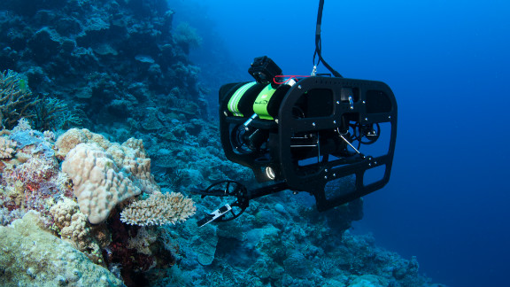 Remote operated vehicles (ROVs) were used to get to depths of around 100 meters, much deeper than normal scuba divers are able to go.