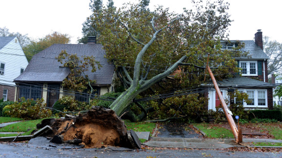 A fallen tree and power line lies over these homes on Harvard Street in Garden City, New York.