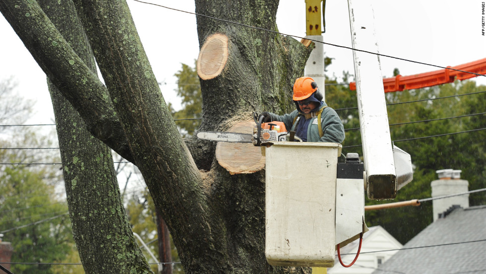 A worker cuts down a tree near American University in Washington on Tuesday.