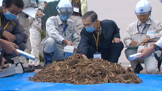 2012: Japan's endless cleanup battle