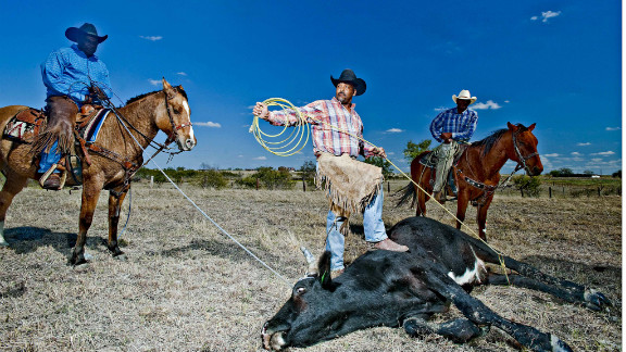 """This is Texas, so most of these people have grown up working with horses. Most of their fathers and grandfathers were cowboys. It goes back centuries, so it"