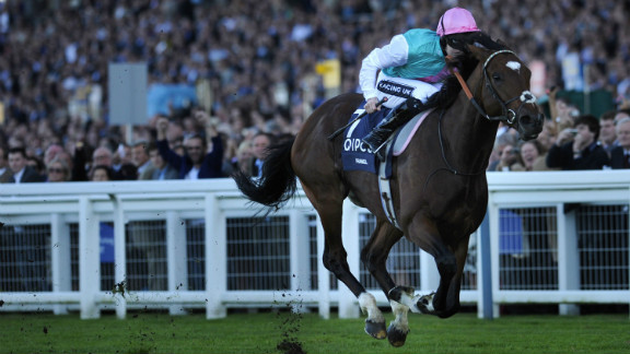 """""""Frankel was a cracking name -- it jumped out of the microphone,"""" says racing commentator Cornelius Lysaught. The superstar colt, who recently retired after an unblemished 14-win career, scooped the main prize at the 2012 UK Horse of the Year awards."""