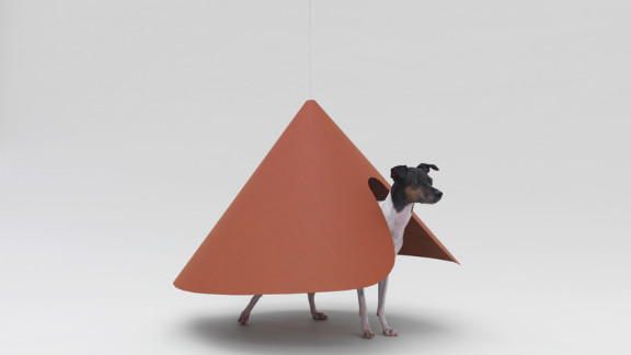 """Pointed T"" by NDC/Haruka Misawa for a Japanese Terrier."