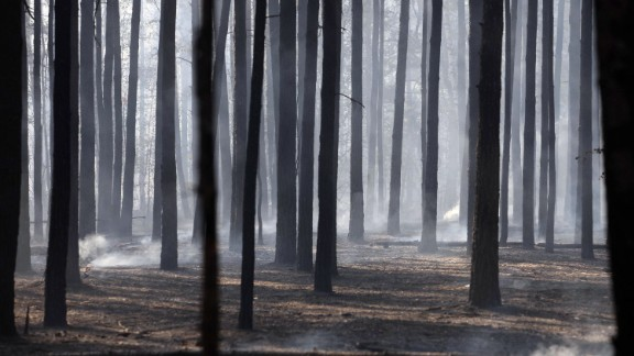 Forest fires engulfed more than 110,000 hectares across Russia during the summer of 2010. Here, a stand of charred birch and evergreen trees is filled with drifting smoke on the outskirts of the city of Voronezh.