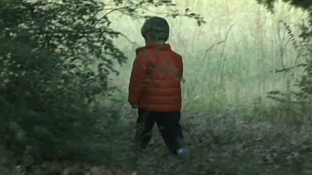 Dog saves 2-year-old lost in woods