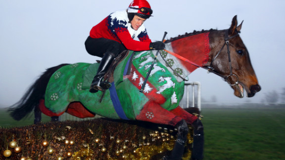 """Champion British jockey Tony """"AP"""" McCoy dons a matching Christmas jumper for The Jockey Club's unique equine calendar. Race horse Dr. Livingstone was painted by Rossa."""