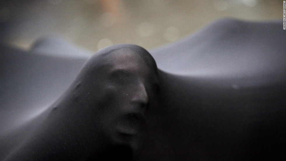 <strong>January 20:</strong> The amorphous black blob, a group of performers huddled underneath stretched black material, makes its way among the Occupy Wall Street West protests in San Franscico's Financial District. The Occupy movement marked its one-year anniversary on September 17.