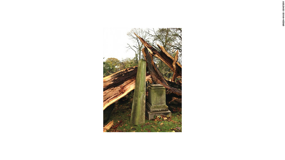 Superstorm Sandy destroyed more than 100 trees and badly damaged scores of monuments when it struck the Northeast in late October, according to Green-Wood's president, Richard Moylan.