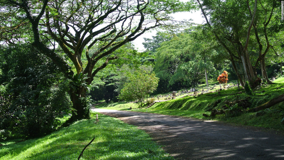 A road in Bukit Brown cemetery, where construction begins in 2013 to create an eight-lane highway.
