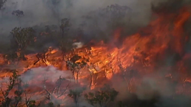 Fire rages across Australian bush