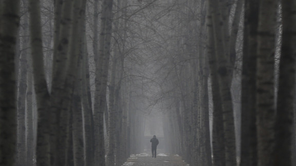A man walks through trees on January 23.