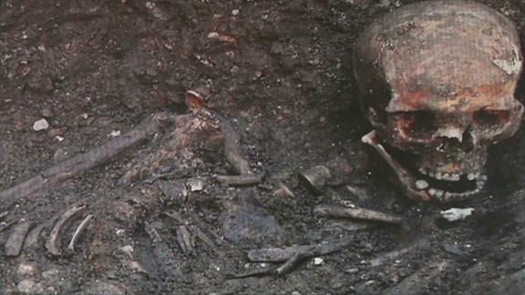 Richard III remains DNA Match_00012726.jpg