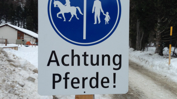"""""""The altitude for the heart and lungs is not a problem for the horses,"""" said vet Annina Widmer."""