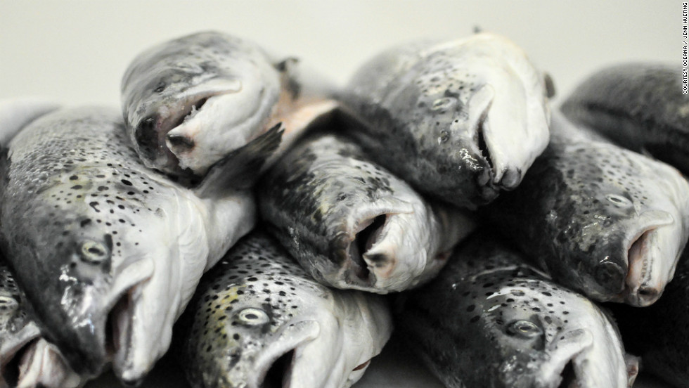 "Widespread <a href=""http://eatocracy.cnn.com/2013/02/21/seafood-fraud-study/"">seafood labeling fraud</a> has cost consumers and law-abiding fishermen millions of dollars, and landed several perpetrators in prison."