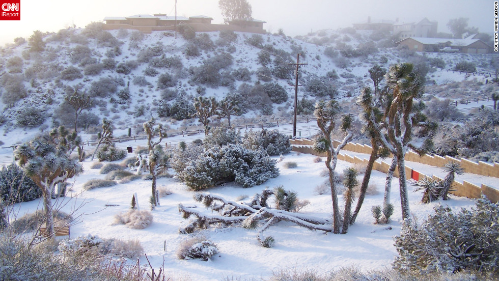 Snow blankets Yucca Valley, California, an area that rarely sees snow, on Wednesday.