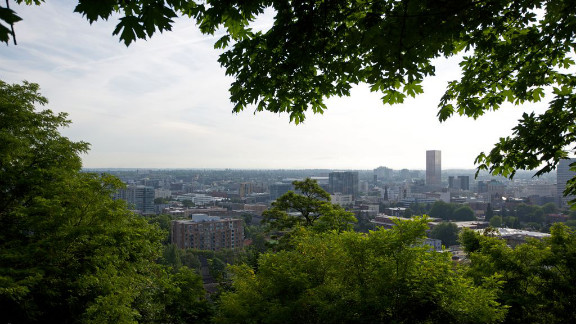 The nonprofit conservation group American Forests has researched the 50 most populous U.S. cities and named the 10 best urban forests. Click through the gallery to learn which big cities are big on trees.  Portland, Oregon, offers bikers, runners, yoga enthusiasts and wildlife aficionados an urban tree canopy that continues to grow. The city boasts a park larger than 5,000 acres, 70 miles of hiking trails, an arboretum with close to 1,000 species of trees and shrubs. Some of the city's derelict parking lots and even a freeway have been transformed into urban oases.