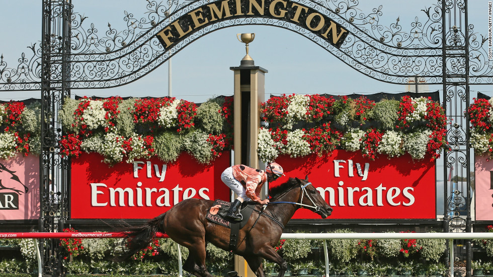 Australian race horse Black Caviar storms home to her 23rd consecutive victory at Melbourne's Lightning Stakes Day last month. The syndicate of five owners paid $315,000 for the horse which has now won more than $7 million in prize money.