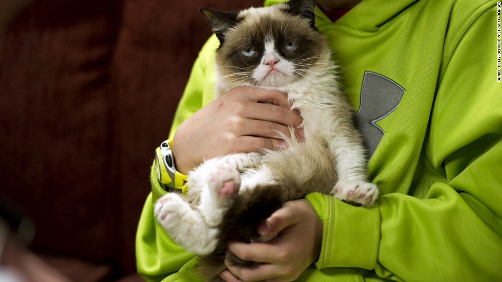 "Tardar Sauce, better known by her viral Internet meme name ""Grumpy Cat,"" has been a hit at SXSW. <a href=""http://www.cnn.com/2013/03/10/tech/web/grumpy-cat-sxsw/index.html?hpt=hp_c2"" target=""_blank"">Read more.</a>"