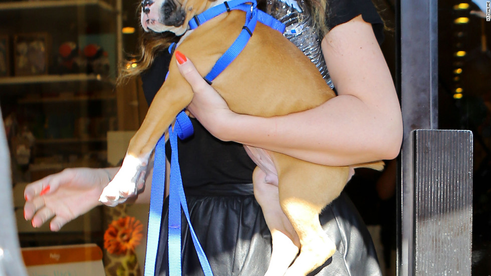 Khloe Kardashian brings her new puppy shopping.