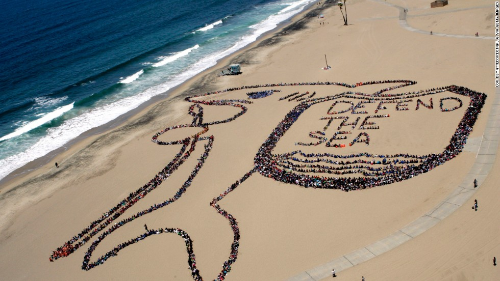 Los Angeles, June 2012: More than 5,000 children, teachers and volunteers form a massive kid-designed shark and shield on  World Oceans Day. This year's event takes place on June 8.