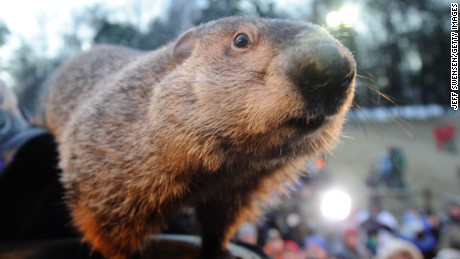 Groundhog Day Fast Facts