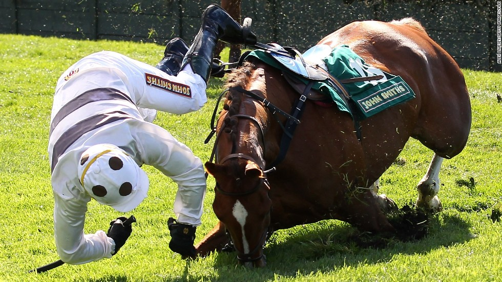 "Thirty-six horses have died in the last 50 years of the race and animal rights activists have called for an overhaul of the course. ""People see horses fall, and that's been a sick spectacle that has promoted the race,"" said Dene Stansall, horse racing consultant at Animal Aid."