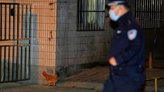 A policeman goes after a chicken that broke loose as Chinese health workers started culling chickens at Huhai wholesale market on April 5.