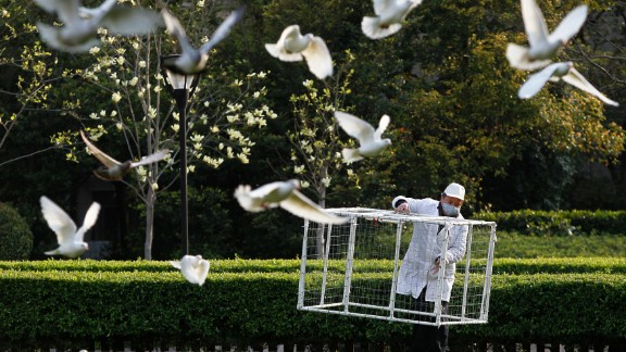 A public park staff carries a cage to catch pigeons at a public area in People