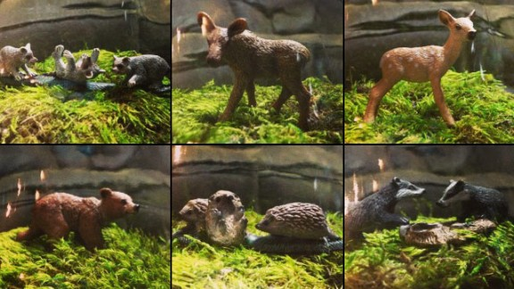 Arlyn Bantog-VanDooyeweert of Vancouver shared a composite image showing a woodland creature-inspired terrarium design.