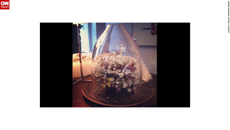 "Hamburg-Hamby says a friend made this <a href=""http://ireport.cnn.com/docs/DOC-959993"">bell jar display</a> for her."